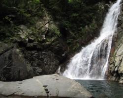 海や川近くの別荘で楽しめる「釣り」の魅力